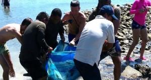 Funcionarios-Ministerio-Ambiente-SENAM-rescataron_LPRIMA20151129_0108_24
